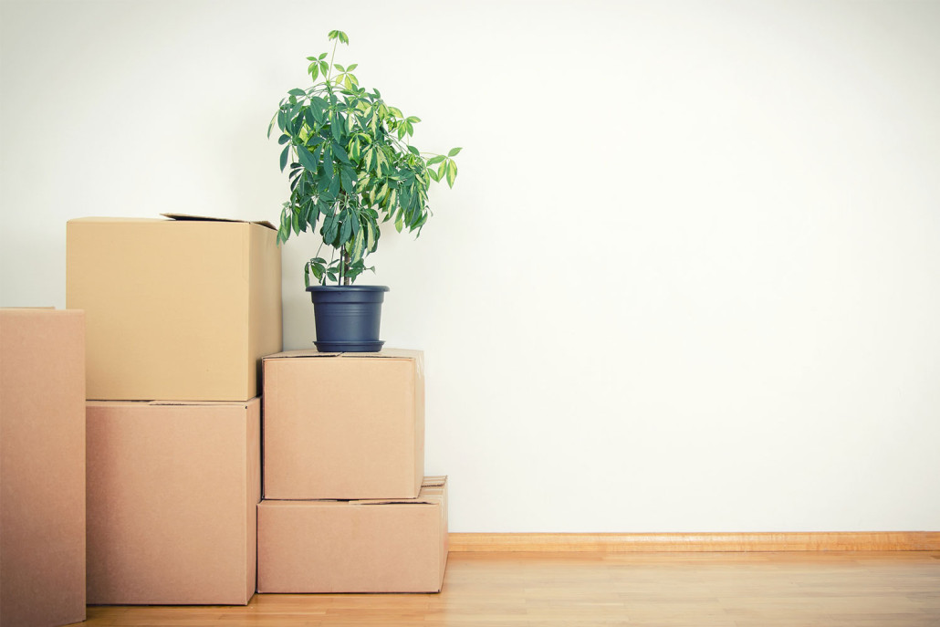 how to move out tenants chicago